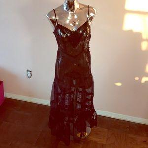 Long Sheer Dress (NWT)